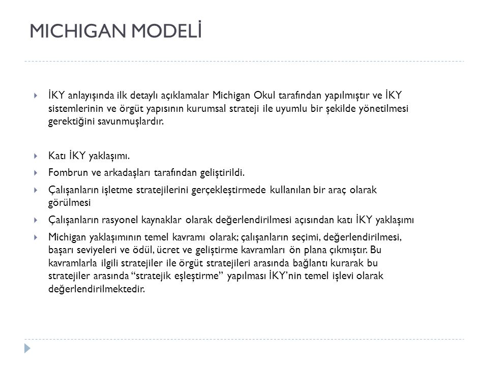 MICHIGAN MODELİ