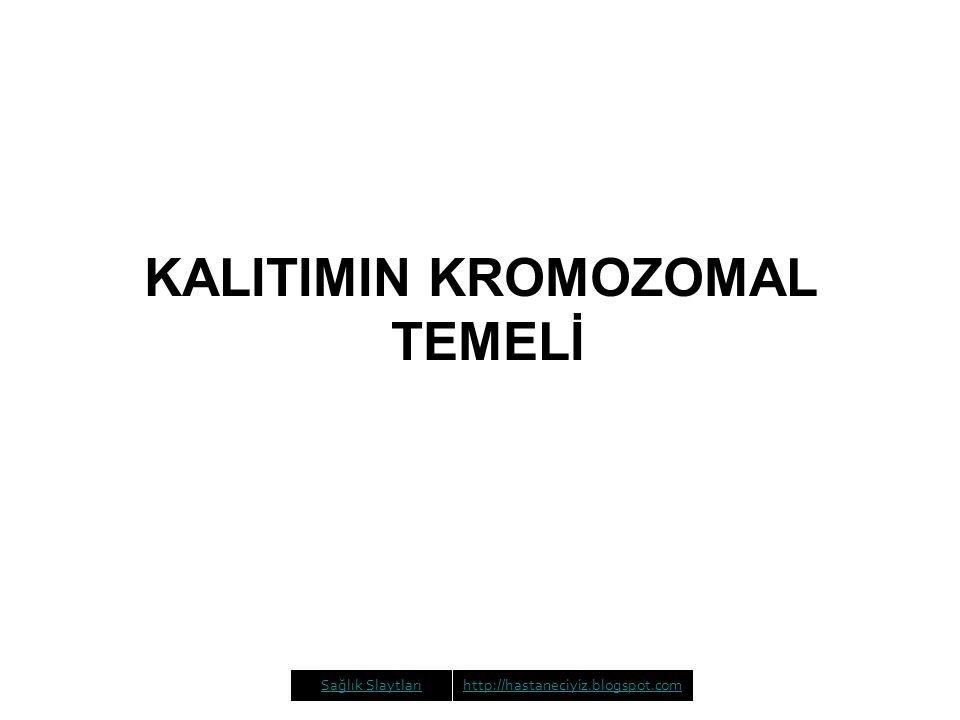 KALITIMIN KROMOZOMAL TEMELİ