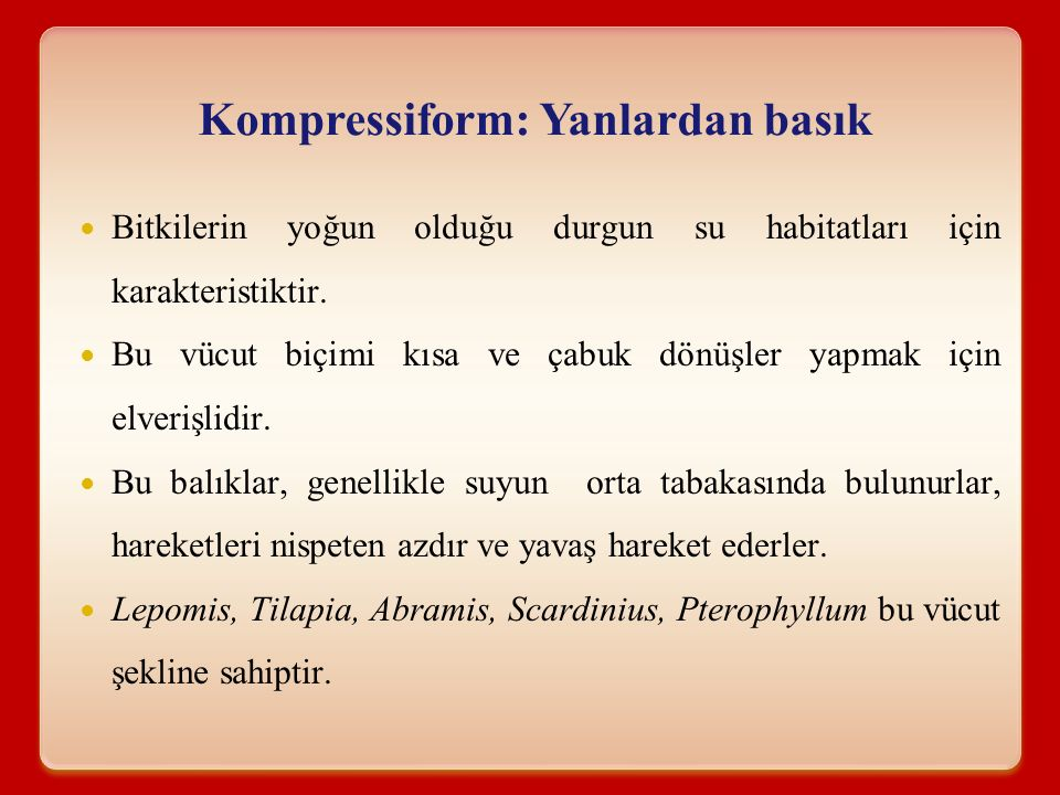 Kompressiform: Yanlardan basık