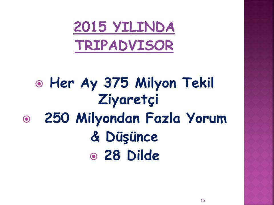 Her Ay 375 Milyon Tekil Ziyaretçi