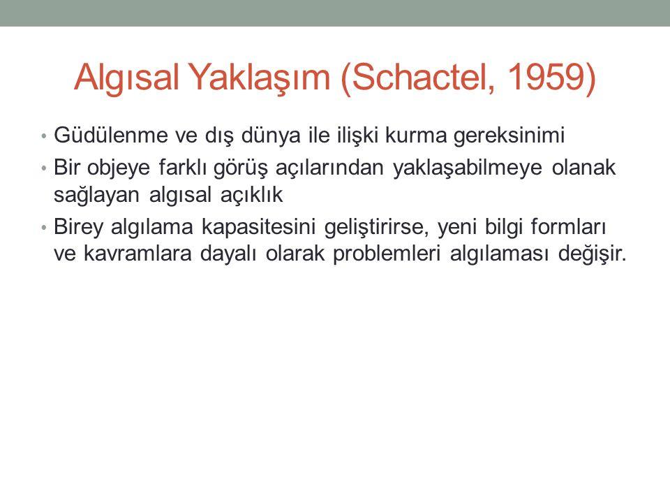 Algısal Yaklaşım (Schactel, 1959)