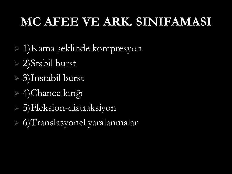 MC AFEE VE ARK. SINIFAMASI