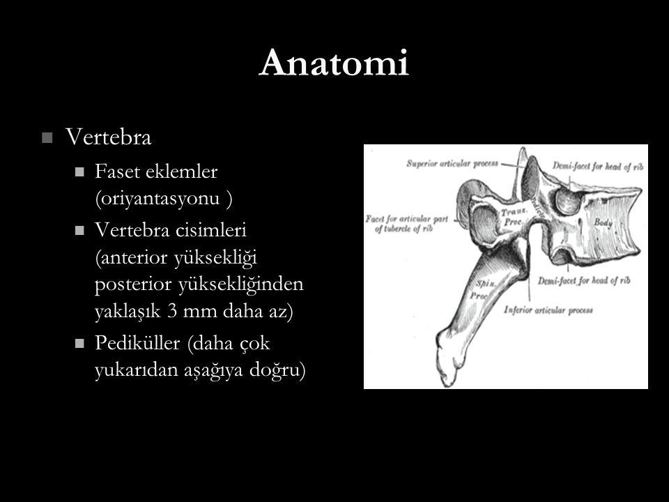 Anatomi Vertebra Faset eklemler (oriyantasyonu )