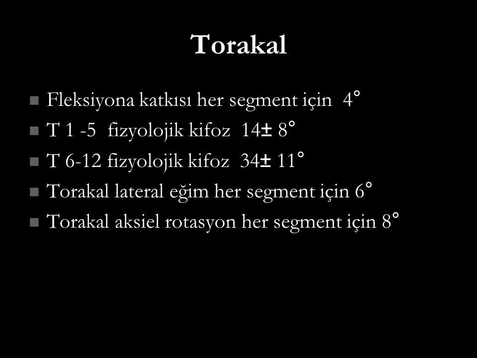 Torakal Fleksiyona katkısı her segment için 4°