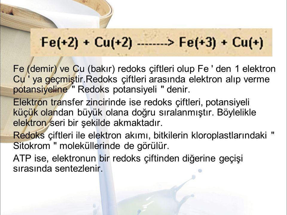 Fe (demir) ve Cu (bakır) redoks çiftleri olup Fe den 1 elektron Cu ya geçmiştir.Redoks çiftleri arasında elektron alıp verme potansiyeline Redoks potansiyeli denir.