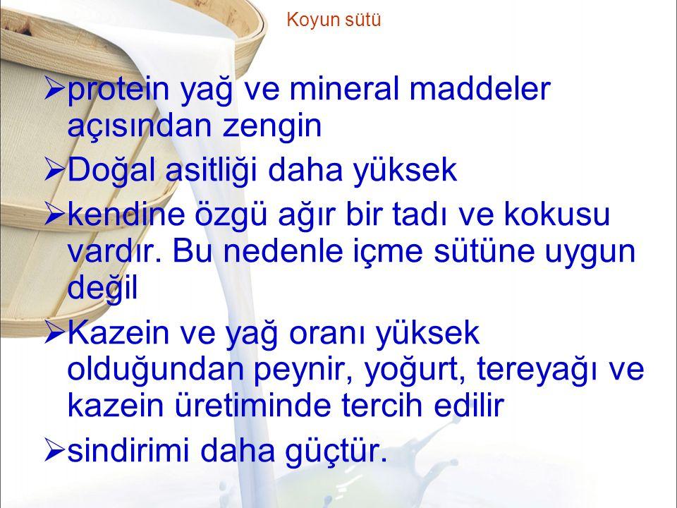 protein yağ ve mineral maddeler açısından zengin