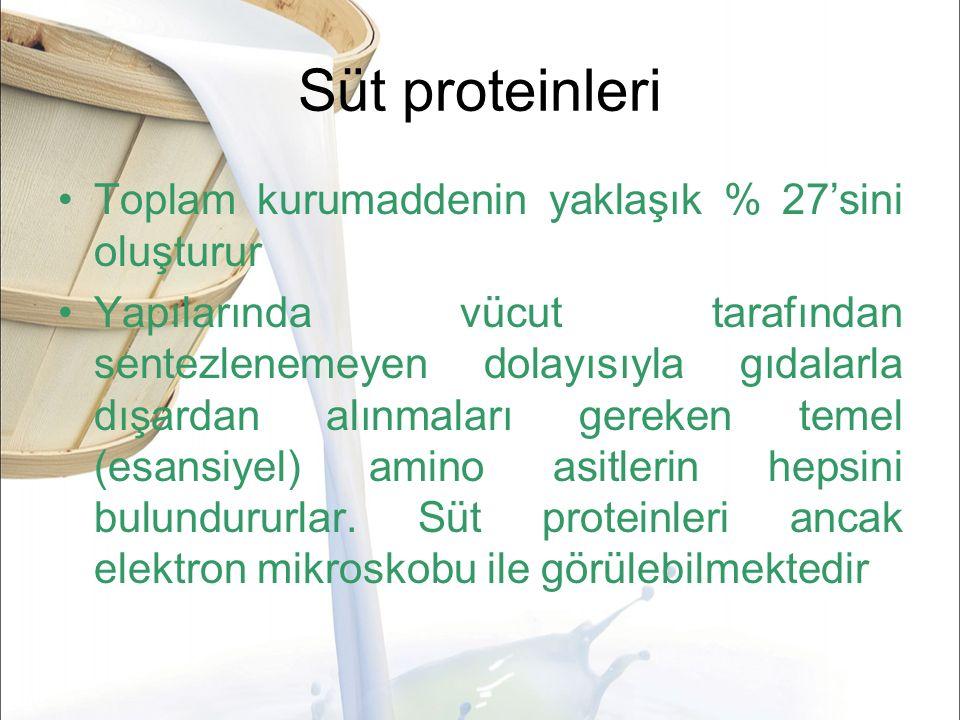 Süt proteinleri Toplam kurumaddenin yaklaşık % 27'sini oluşturur