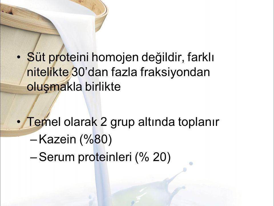 Süt proteini homojen değildir, farklı nitelikte 30'dan fazla fraksiyondan oluşmakla birlikte
