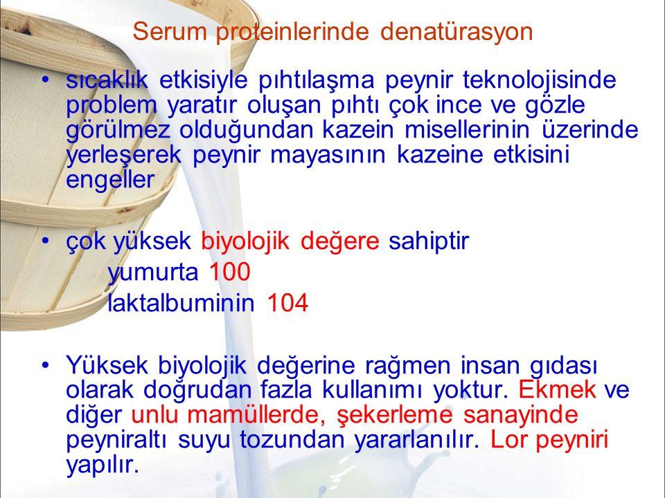 Serum proteinlerinde denatürasyon