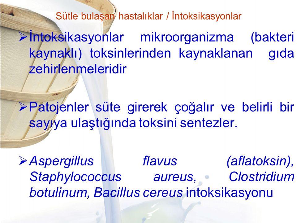 Sütle bulaşan hastalıklar / İntoksikasyonlar