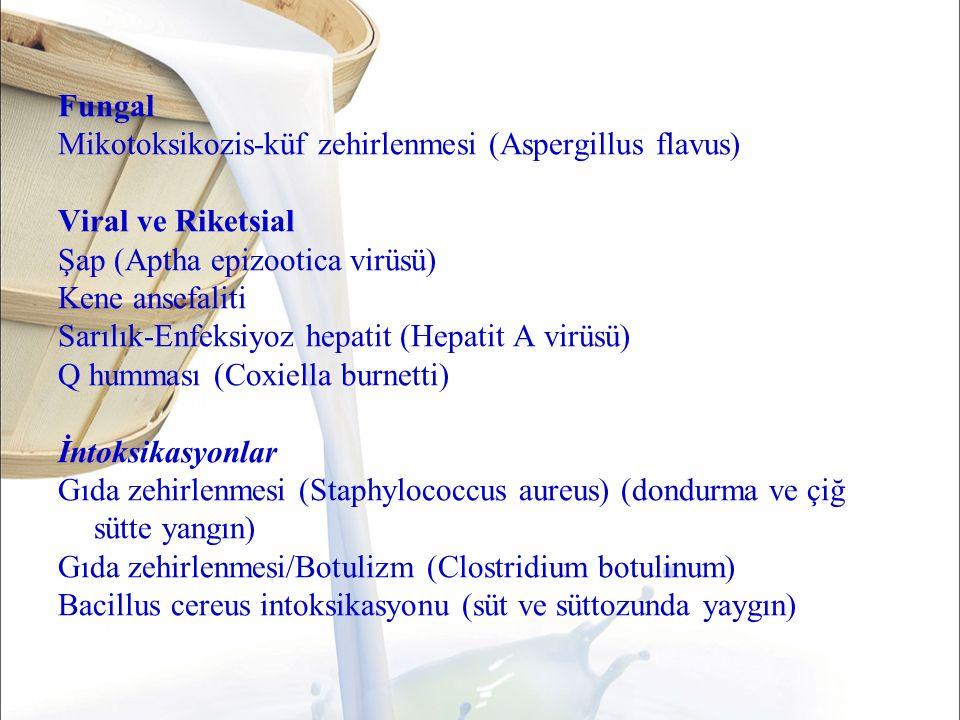 Fungal Mikotoksikozis-küf zehirlenmesi (Aspergillus flavus) Viral ve Riketsial. Şap (Aptha epizootica virüsü)