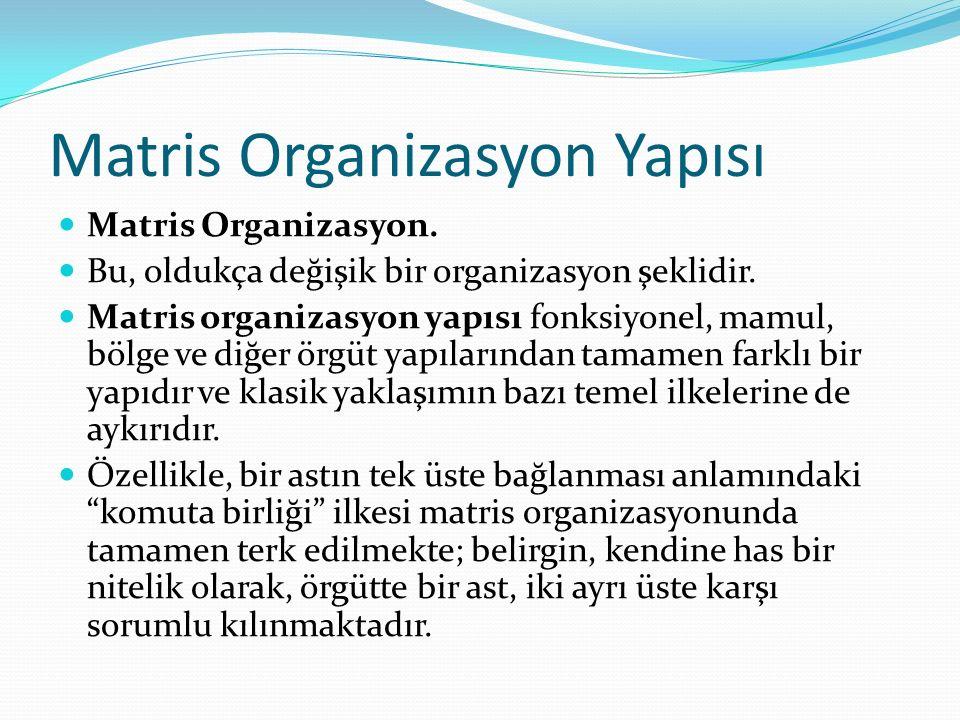 Matris Organizasyon Yapısı