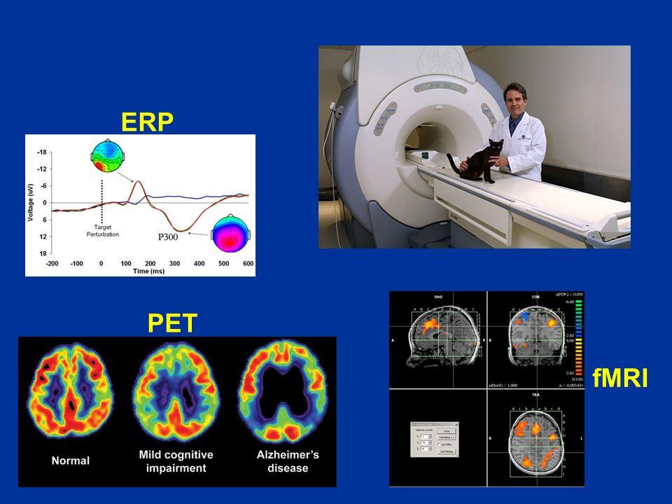 ERP PET fMRI