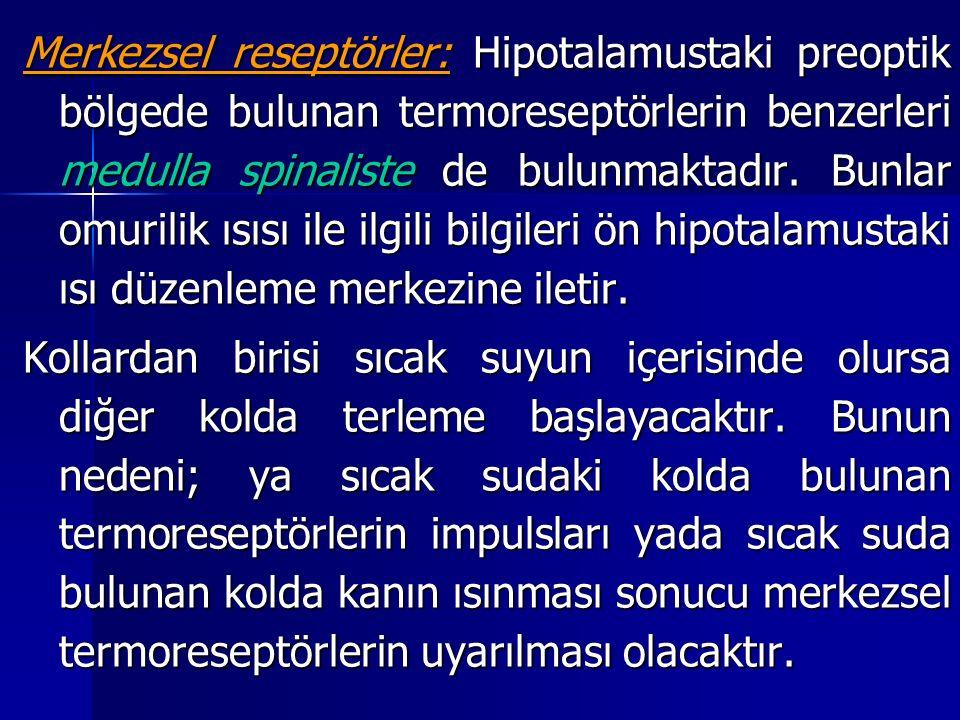 Merkezsel reseptörler: Hipotalamustaki preoptik bölgede bulunan termoreseptörlerin benzerleri medulla spinaliste de bulunmaktadır. Bunlar omurilik ısısı ile ilgili bilgileri ön hipotalamustaki ısı düzenleme merkezine iletir.