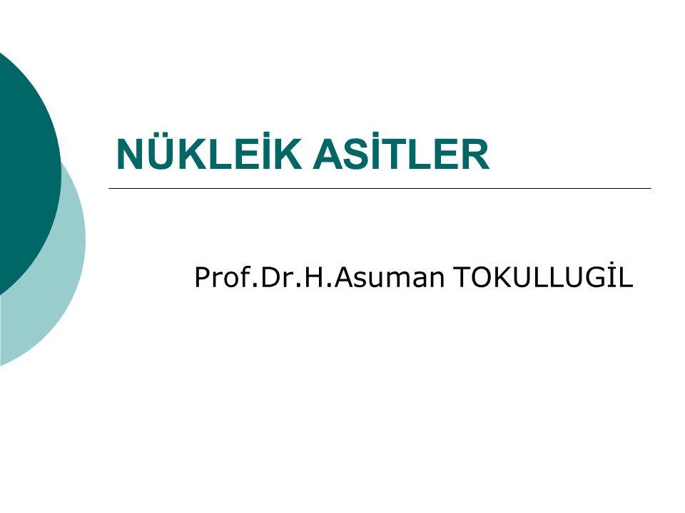 Prof.Dr.H.Asuman TOKULLUGİL