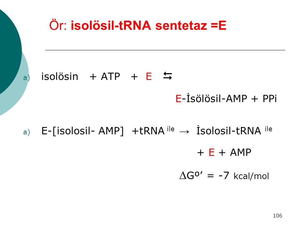 Ör: isolösil-tRNA sentetaz =E