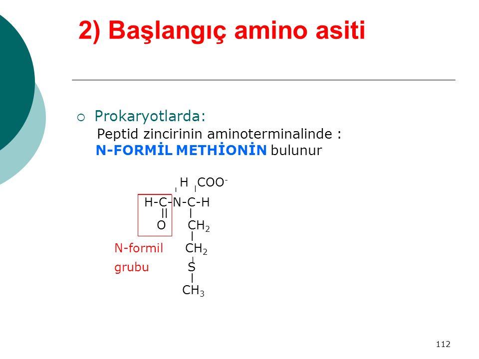 2) Başlangıç amino asiti