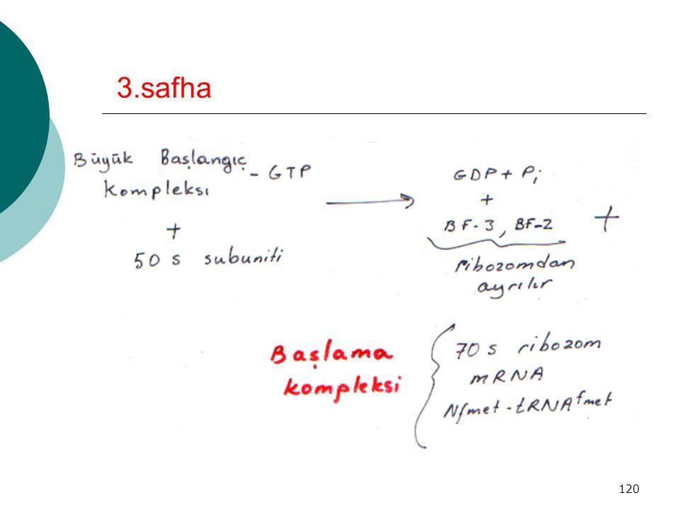 3.safha
