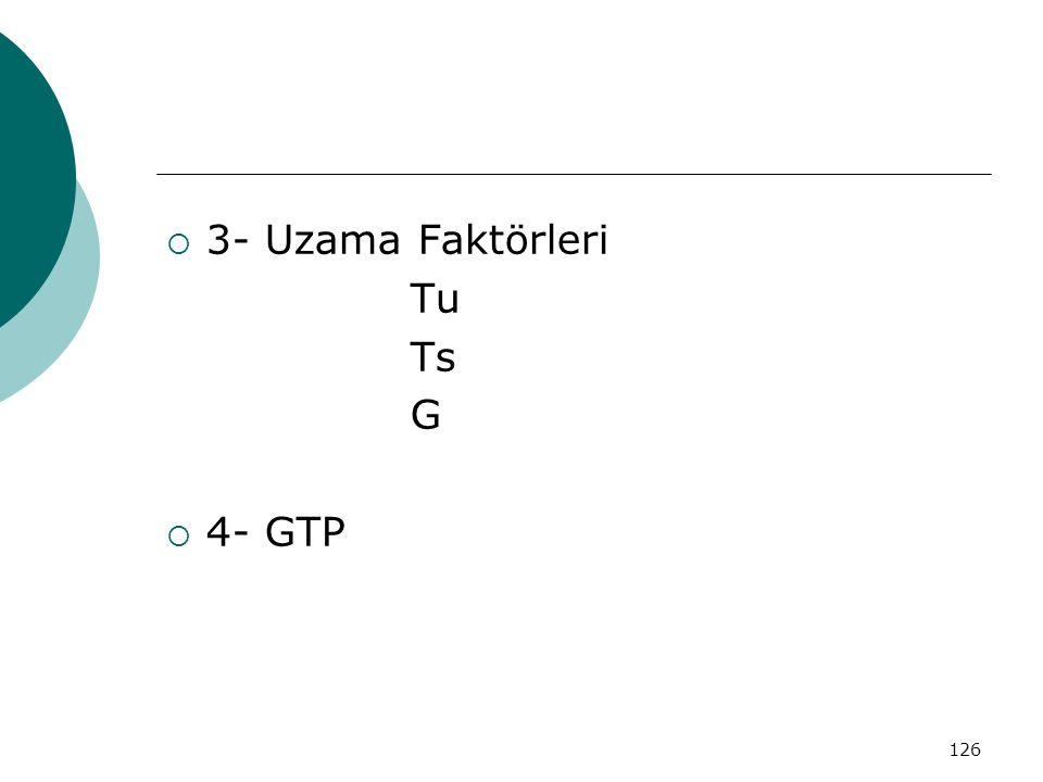 3- Uzama Faktörleri Tu Ts G 4- GTP