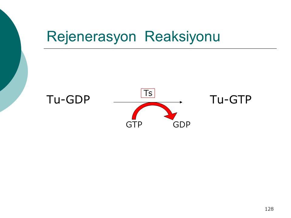 Rejenerasyon Reaksiyonu