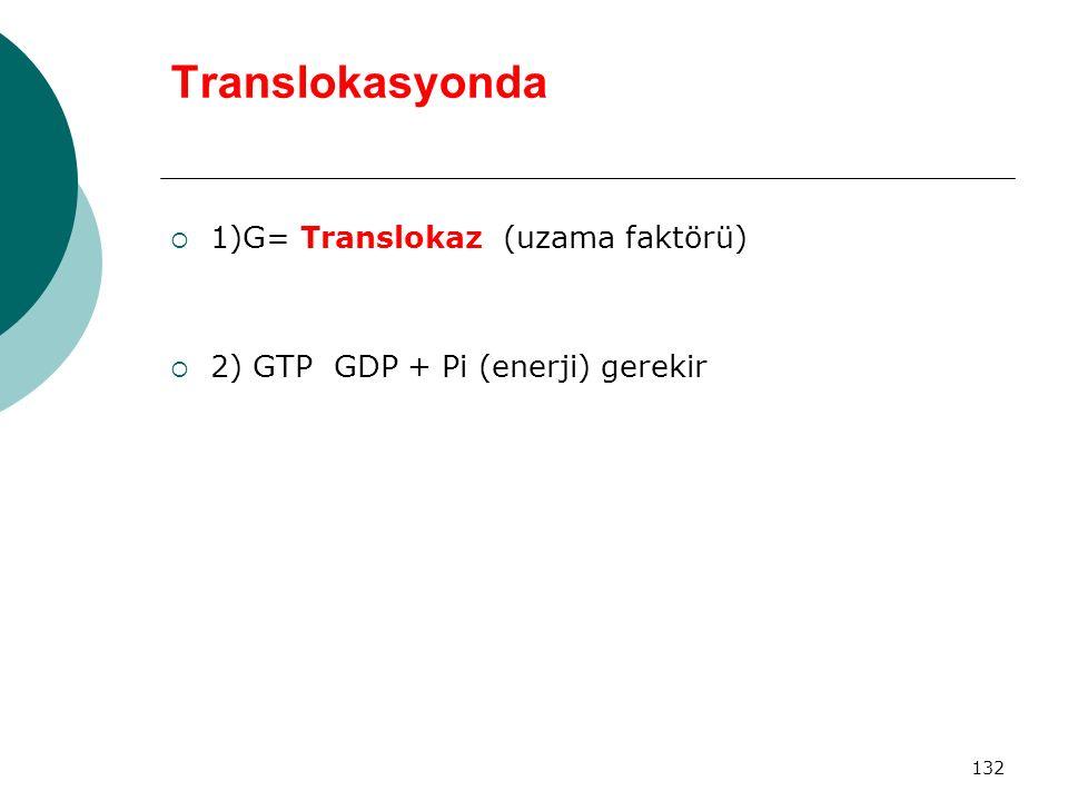 Translokasyonda 1)G= Translokaz (uzama faktörü)