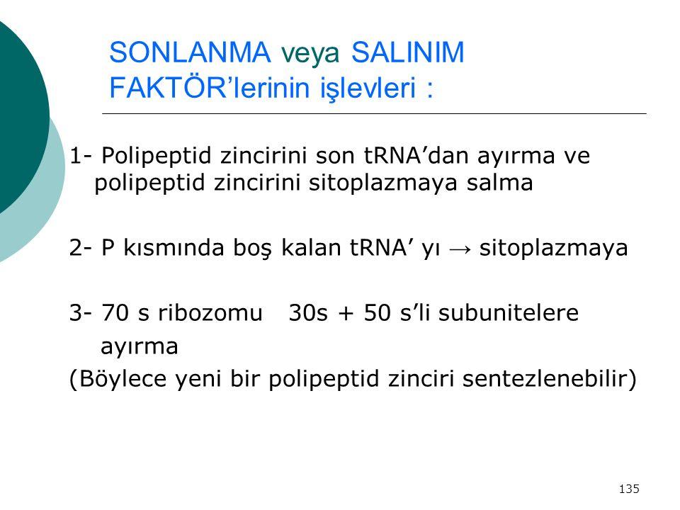 SONLANMA veya SALINIM FAKTÖR'lerinin işlevleri :