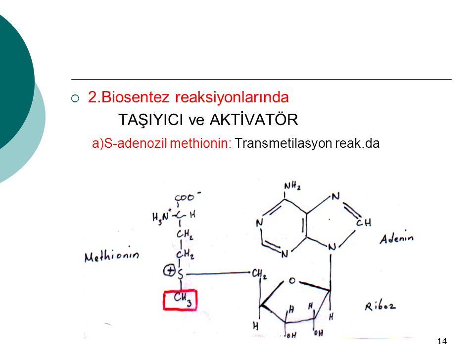 2.Biosentez reaksiyonlarında