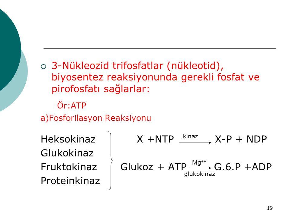 3-Nükleozid trifosfatlar (nükleotid), biyosentez reaksiyonunda gerekli fosfat ve pirofosfatı sağlarlar: