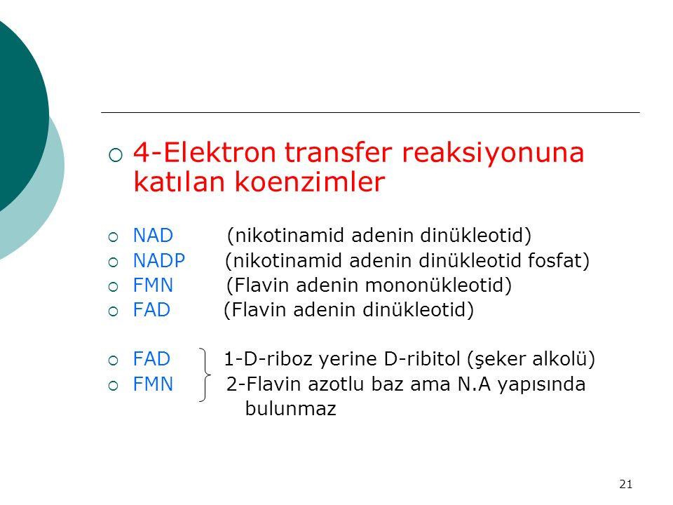 4-Elektron transfer reaksiyonuna katılan koenzimler