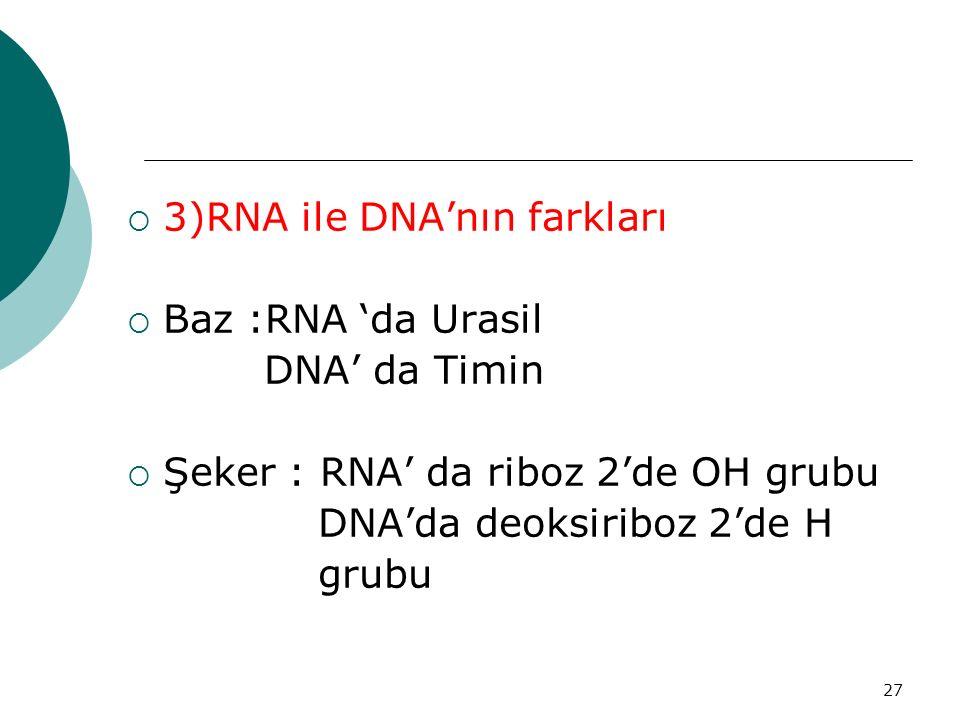 3)RNA ile DNA'nın farkları