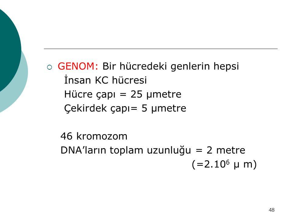 GENOM: Bir hücredeki genlerin hepsi