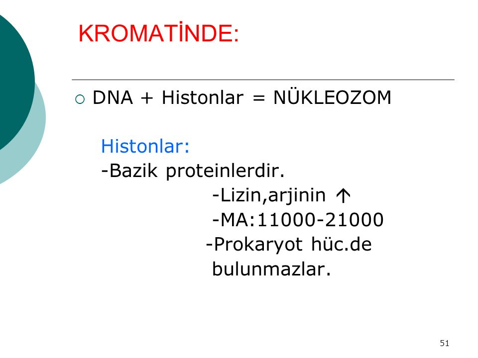 KROMATİNDE: DNA + Histonlar = NÜKLEOZOM Histonlar: