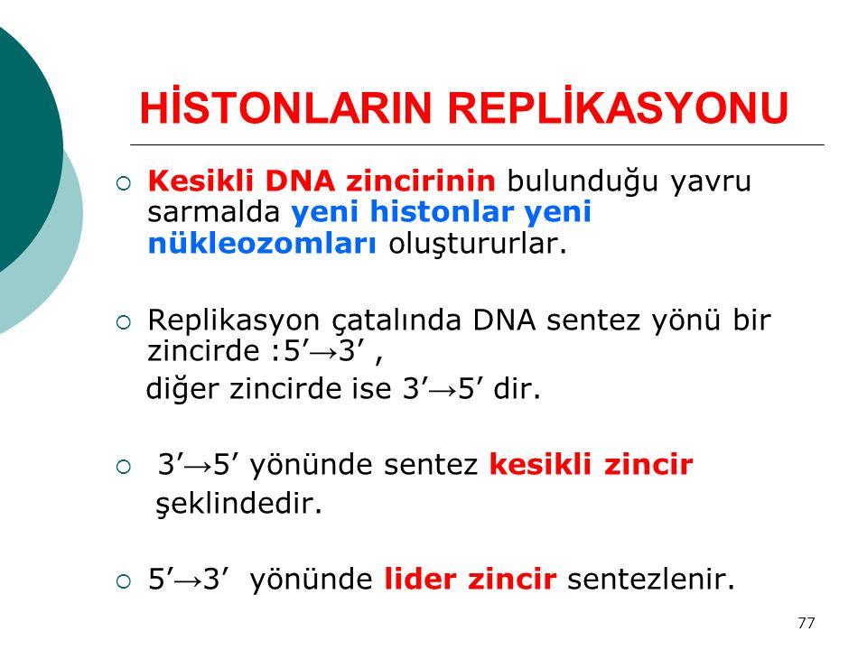 HİSTONLARIN REPLİKASYONU