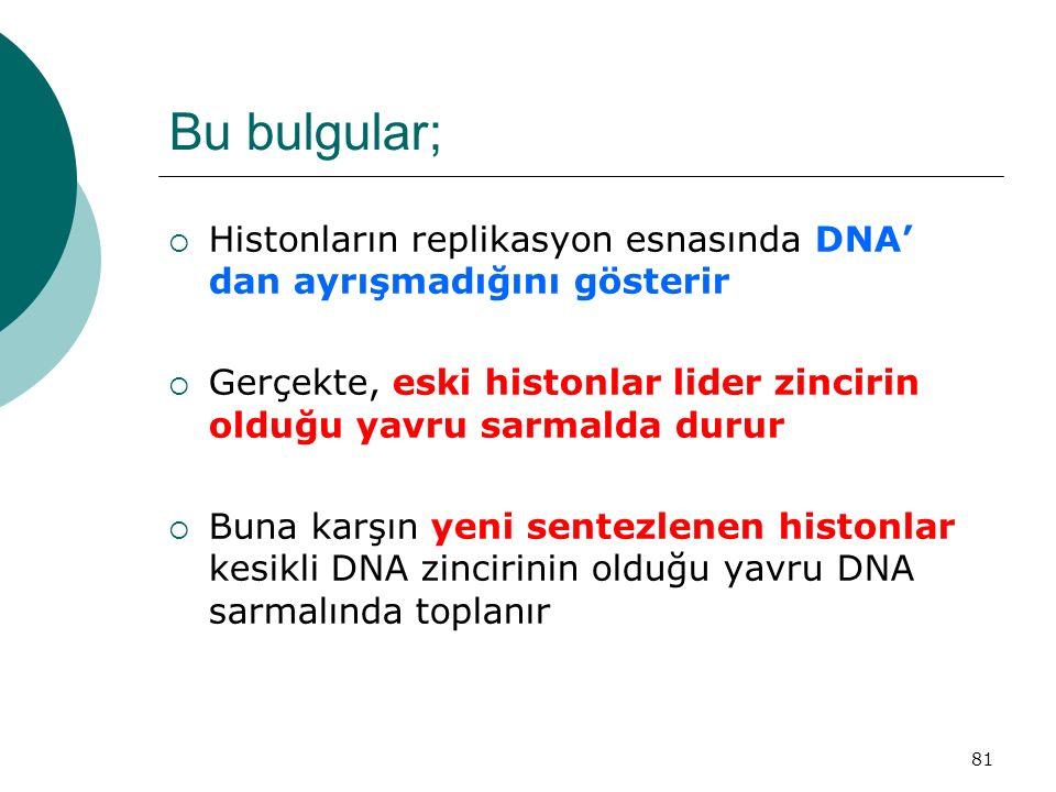 Bu bulgular; Histonların replikasyon esnasında DNA' dan ayrışmadığını gösterir. Gerçekte, eski histonlar lider zincirin olduğu yavru sarmalda durur.