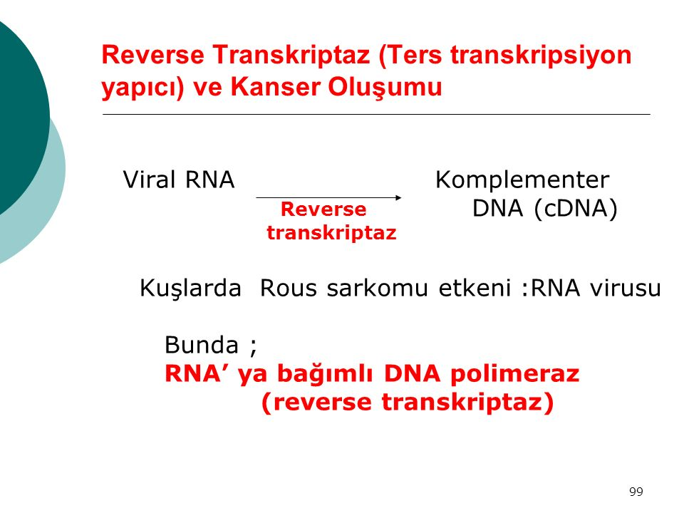 Reverse Transkriptaz (Ters transkripsiyon yapıcı) ve Kanser Oluşumu