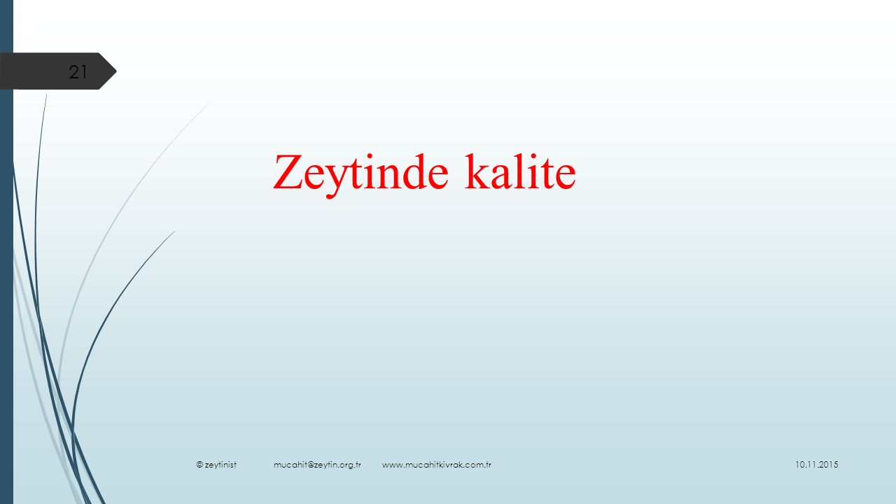 Zeytinde kalite © zeytinist mucahit@zeytin.org.tr www.mucahitkivrak.com.tr.