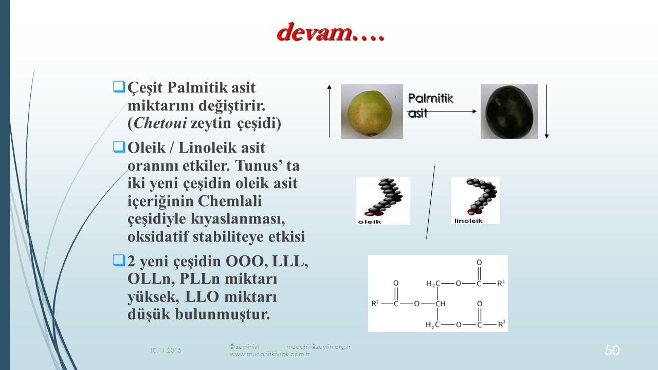 devam…. Çeşit Palmitik asit miktarını değiştirir. (Chetoui zeytin çeşidi)