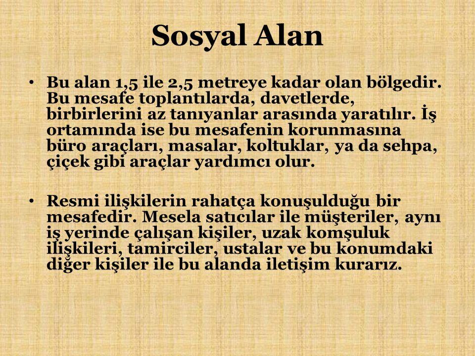 Sosyal Alan