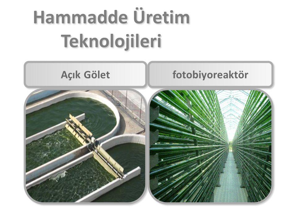 Hammadde Üretim Teknolojileri