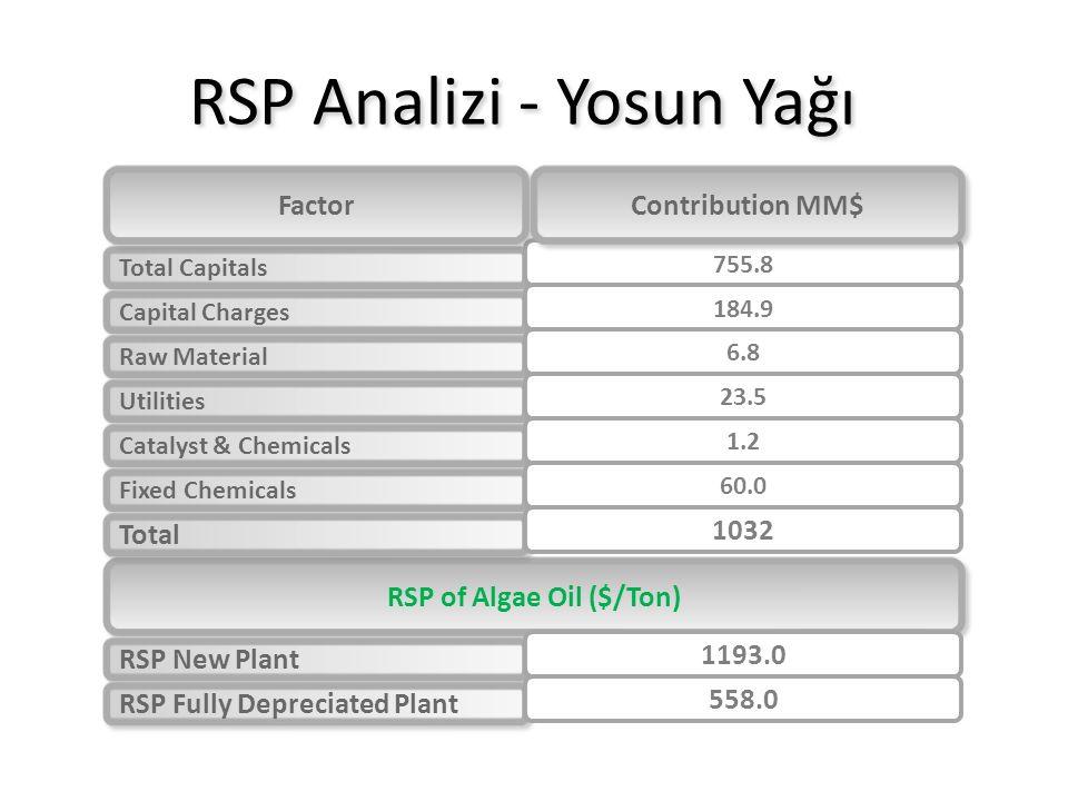 RSP Analizi - Yosun Yağı