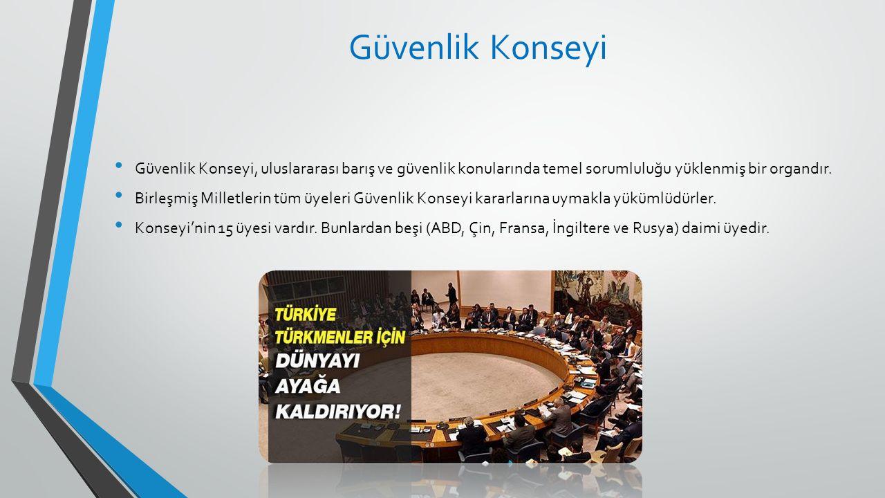 Güvenlik Konseyi Güvenlik Konseyi, uluslararası barış ve güvenlik konularında temel sorumluluğu yüklenmiş bir organdır.