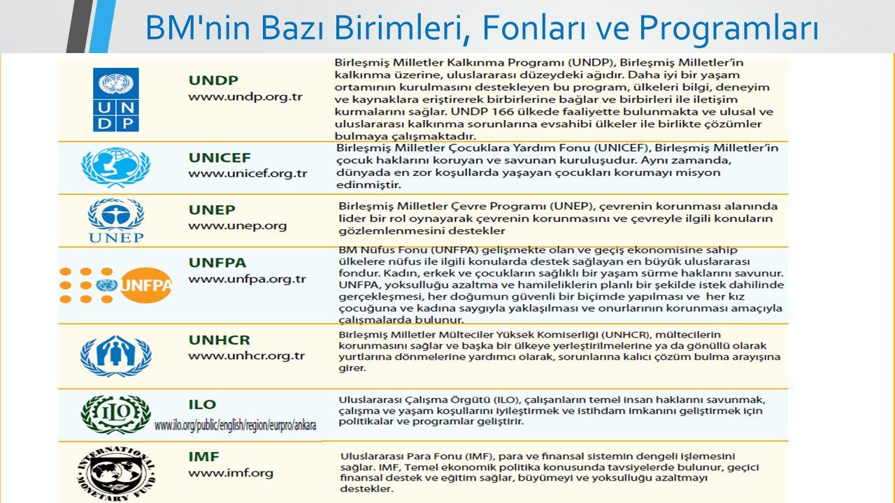 BM nin Bazı Birimleri, Fonları ve Programları