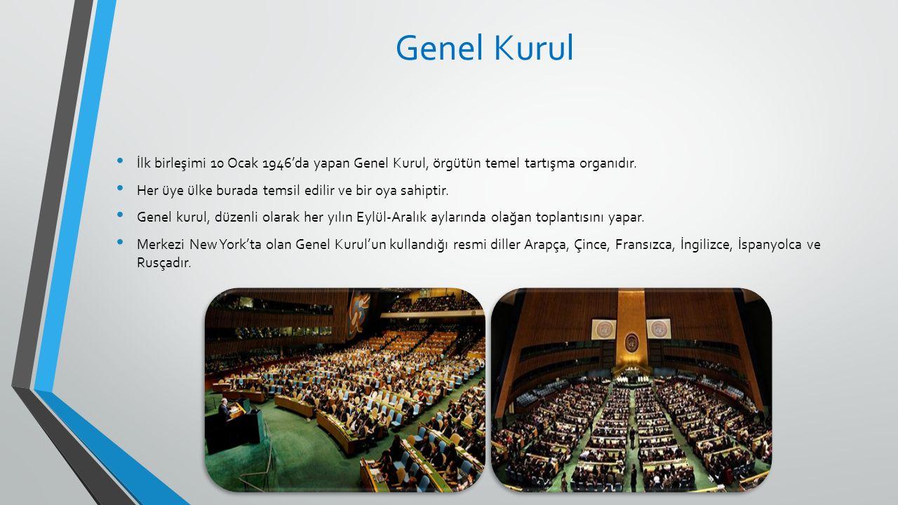 Genel Kurul İlk birleşimi 10 Ocak 1946'da yapan Genel Kurul, örgütün temel tartışma organıdır.
