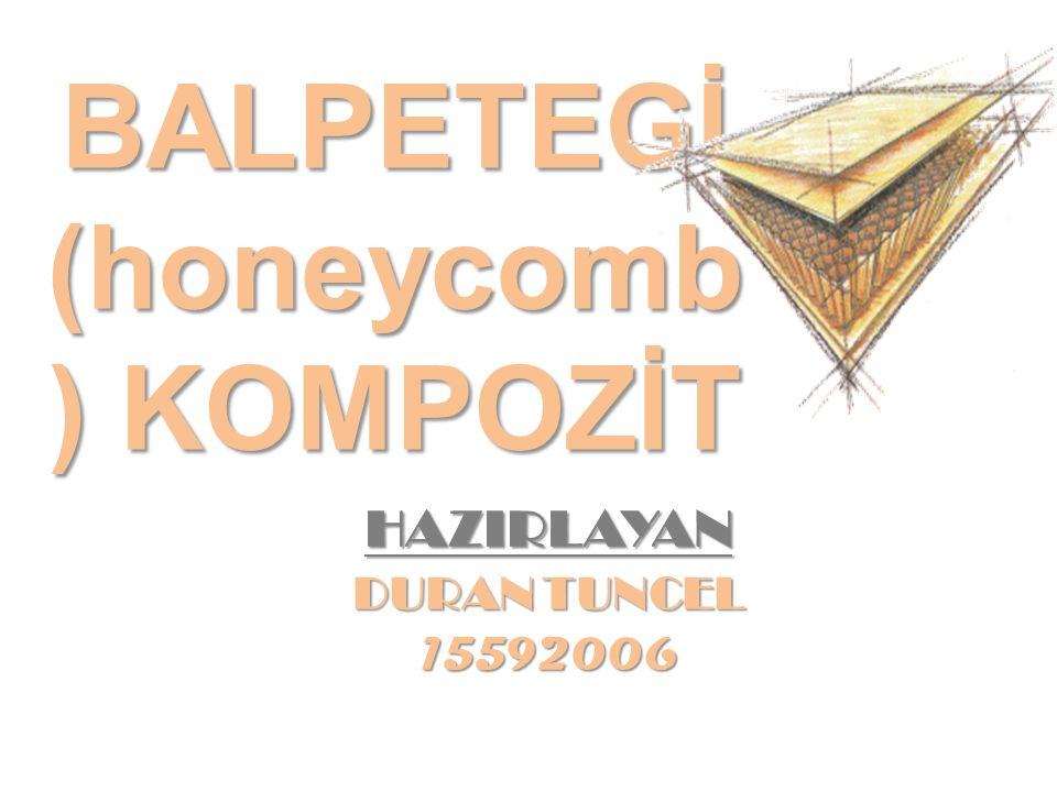 BALPETEGİ (honeycomb) KOMPOZİT