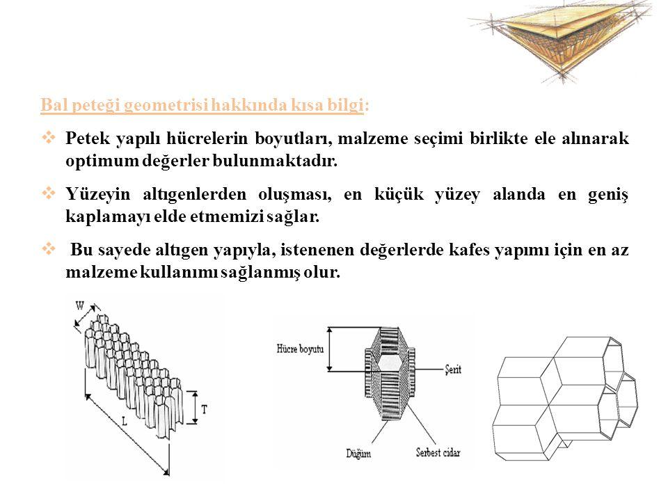 Bal peteği geometrisi hakkında kısa bilgi: