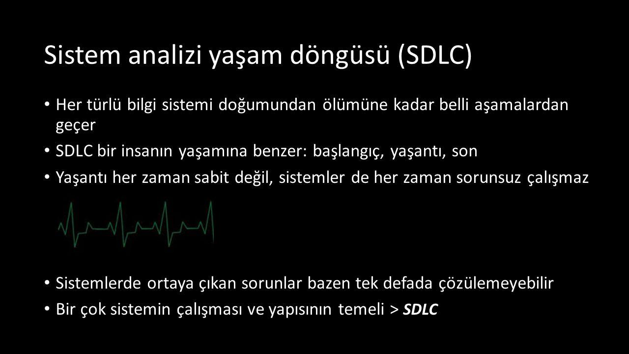 Sistem analizi yaşam döngüsü (SDLC)