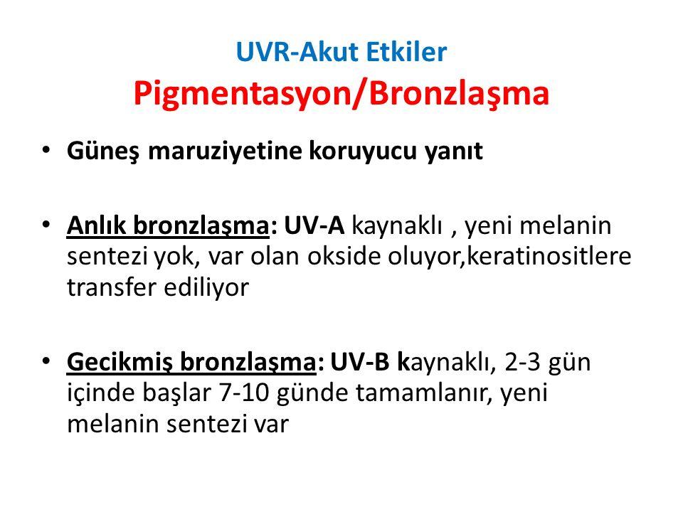 UVR-Akut Etkiler Pigmentasyon/Bronzlaşma