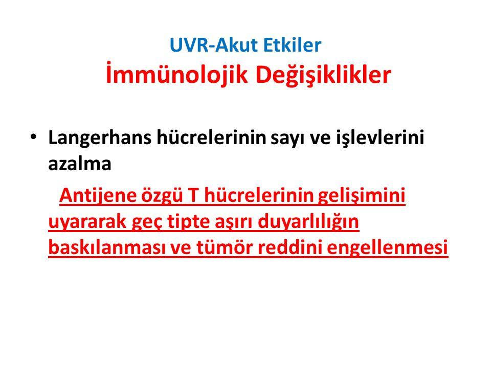 UVR-Akut Etkiler İmmünolojik Değişiklikler