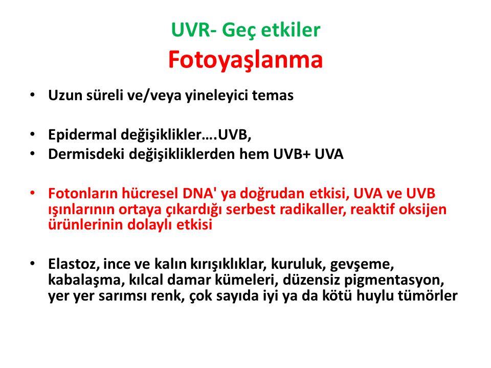 UVR- Geç etkiler Fotoyaşlanma