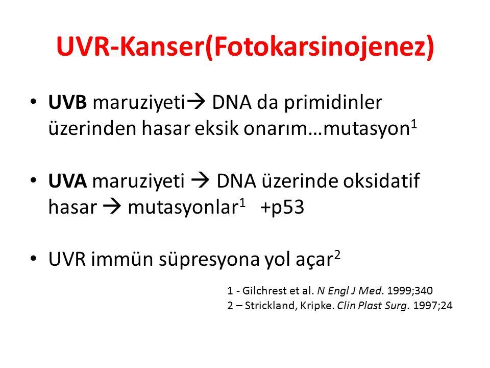 UVR-Kanser(Fotokarsinojenez)
